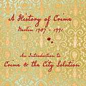 An Introduction To de Crime & The City Solution