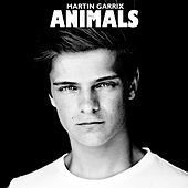 Animals by Martin Garrix