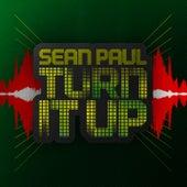 Turn It Up de Sean Paul
