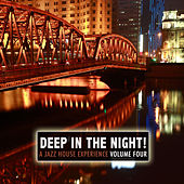 Deep in the Night!, Vol.4 - A Jazz House Experience von Various Artists
