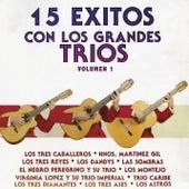 15 Éxitos Con los Grandes Tríos, Vol.1 de Various Artists
