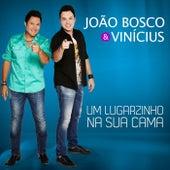 Um Lugarzinho Na Sua Cama de João Bosco & Vinícius