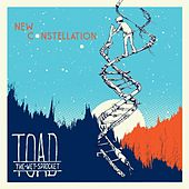 New Constellation de Toad the Wet Sprocket