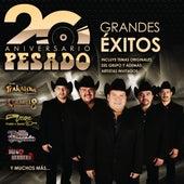 Pesado - 20 Aniversario de Various Artists