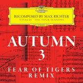 Autumn 3 - Recomposed By Max Richter - Vivaldi: The Four Seasons von Max Richter