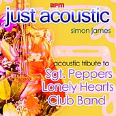 Acoustic Tribute to Sgt Peppers Lonely Hearts Club Band by Simon James