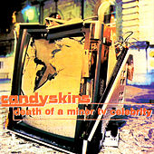 Death of a Minor TV Celebrity by The Candyskins