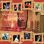 Lo Mejor Del Flamenco de Various Artists