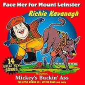 Face Her For Mount Leinster by Richie Kavanagh