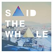Little Mountain by Said The Whale