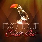 Chill-out exotique (50 chansons qui fusionnent chill-out et musiques du monde) by Various Artists
