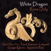 White Dragon by Trio Chemirani
