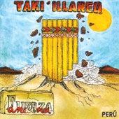 Fuerza Andina de Taki' Illareq