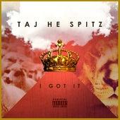 I Got It by Taj-he-spitz