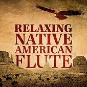Relaxing Native American Flute de Various Artists