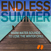 Endless Summer - Warm Water Sounds of Lakes and Ponds to Lose the Winter Chill for Yoga, Massage, Relaxation. And More! by Various Artists