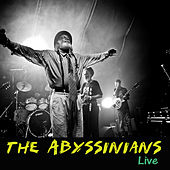 Live by Abyssinians
