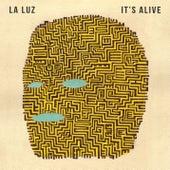 It's Alive by La Luz