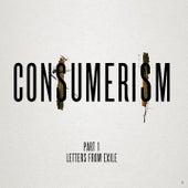 Consumerism von Lauryn Hill