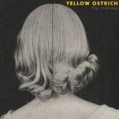 The Mistress de Yellow Ostrich