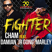 Fighter by Cham