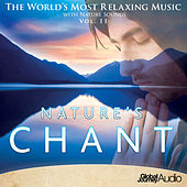 The World's Most Relaxing Music with Nature Sounds, Vol. 11: Nature's Chant by Global Journey