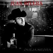 Oveja Negra by Juan Rivera