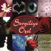 Sevgiliye Özel by Various Artists