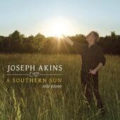 A Southern Sun by Joseph Akins