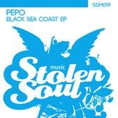 Black Sea Coast de Pepo