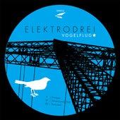 Vogelflug von Elektrodrei