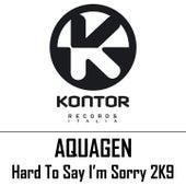 Hard to Say I'm Sorry 2k9 di Aquagen