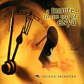 An Instrumental Tribute To The Hits Of Enya by The Taliesin Orchestra