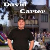 David Carter by David Carter