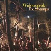 The Swamps by Widowspeak