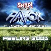 Feeling Good by Havok