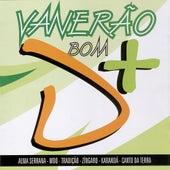 Vaneirão Bom D+ - Volume 2 by Various Artists