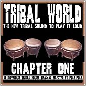 Tribal World Chapter One by Various Artists