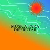Música para Disfrutar de Various Artists