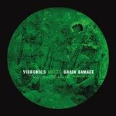 Empire Soldiers Dubplate, Vol. 2 de Vibronics Brain Damage