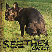 Seether: 2002-2013 von Seether