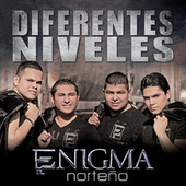 Diferentes Niveles by Enigma Norteño