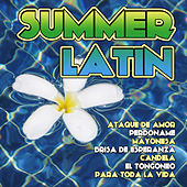 Summer Latin by Various Artists