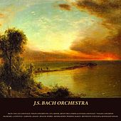 Bach: Toccata and Fugue, Violin Concerto No. 1 in A Minor, Air On the G String & Fantasia and Fugue - Vivaldi: Concertos - Pachelbel: Canon in D - Albinoni: Adagio - Rinaldi: Works - Mendelssohn: Wedding March - Beethoven: Fur Elise & Moonlight Sonata by Various Artists