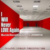 I Will Never Love Again (feat. ZoiDiva) by Burak Harsitlioglu