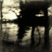 Scenes - Single by Dark Matter