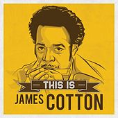 This is de James Cotton