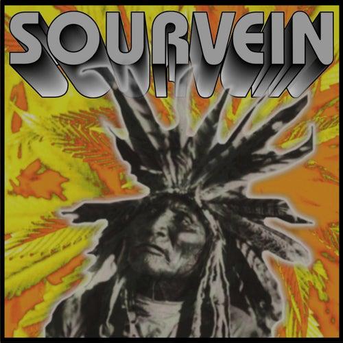 Sourvein by Sourvein