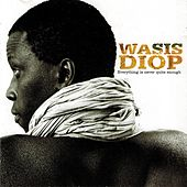 Everything Is Never Quite Enough by Wasis Diop