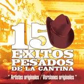 15 Éxitos Pesados De La Cantina de Various Artists